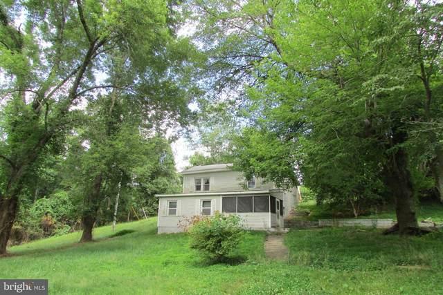 5223 Emmanuel Lane, AMISSVILLE, VA 20106 (#VACU141704) :: Eng Garcia Properties, LLC