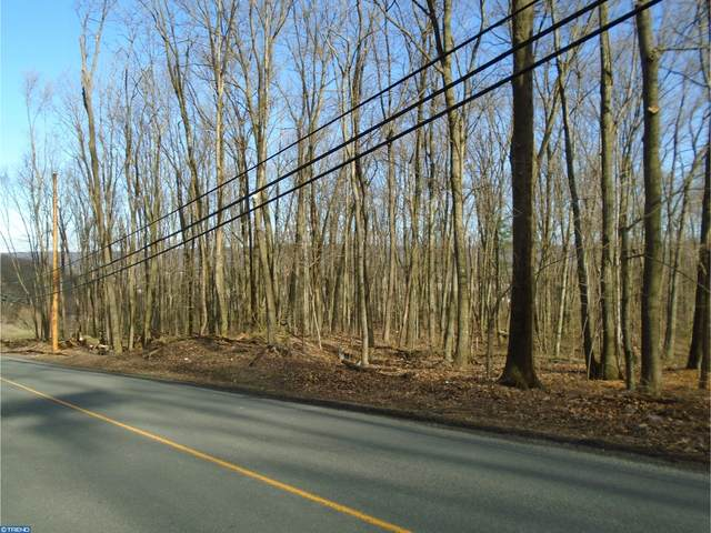 Lot #2 Luckenbill Road, SCHUYLKILL HAVEN, PA 17972 (#PASK131076) :: Ramus Realty Group