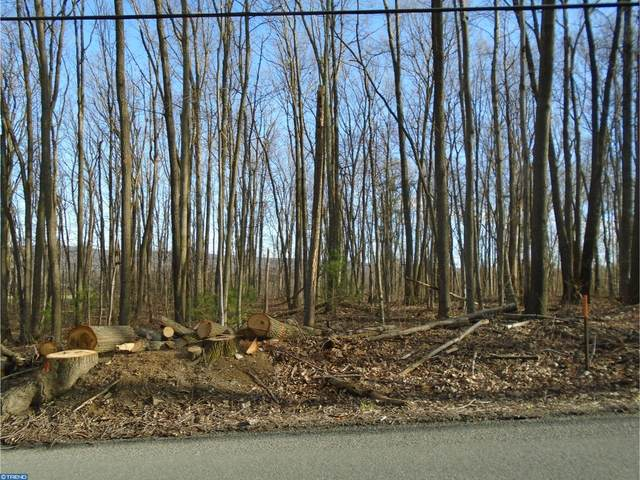 Lot #3 Luckenbill Road, SCHUYLKILL HAVEN, PA 17972 (#PASK131078) :: Ramus Realty Group
