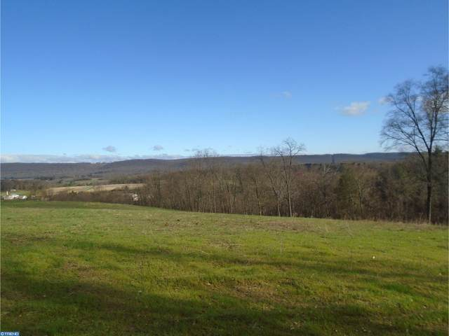 Lot #9 Luckenbill Road, SCHUYLKILL HAVEN, PA 17972 (#PASK131082) :: Ramus Realty Group