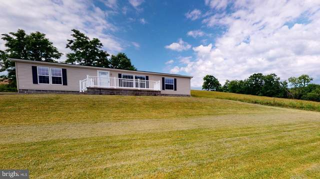 135 Lois Lane, MAYSVILLE, WV 26833 (#WVGT103230) :: The Bob & Ronna Group