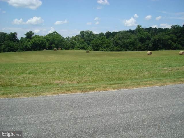 5920 Crescent Point Drive, ORANGE, VA 22960 (#VASP222764) :: RE/MAX Cornerstone Realty