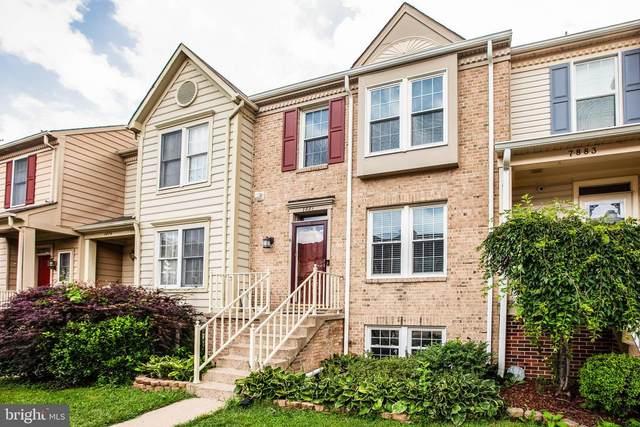 7881 Blue Gray Circle, MANASSAS, VA 20109 (#VAPW497388) :: Arlington Realty, Inc.
