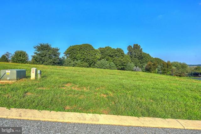 573 Monocacy Trail #175, SPRING GROVE, PA 17362 (#PAYK139686) :: Pearson Smith Realty