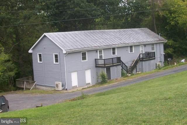102-&  102 Creek Side Lane, EDINBURG, VA 22824 (#VASH119464) :: SURE Sales Group