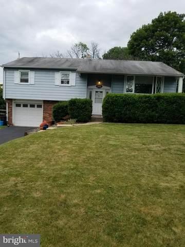 204 Hickory Lane, DOUGLASSVILLE, PA 19518 (#PABK359300) :: Bob Lucido Team of Keller Williams Integrity