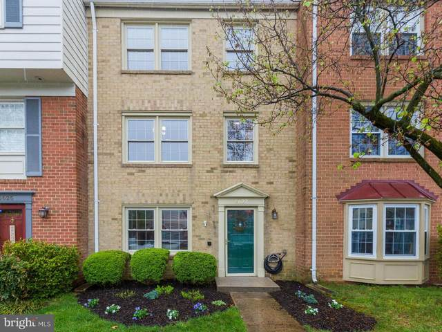 6627 Deer Gap Court, ALEXANDRIA, VA 22310 (#VAFX1135612) :: Great Falls Great Homes