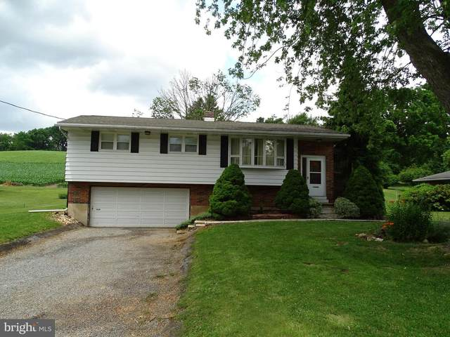175 W Hanover Street, SPRING GROVE, PA 17362 (#PAYK139896) :: ExecuHome Realty