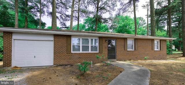 22787 Hurdle Ditch Road, HARBESON, DE 19951 (#DESU163028) :: Ramus Realty Group