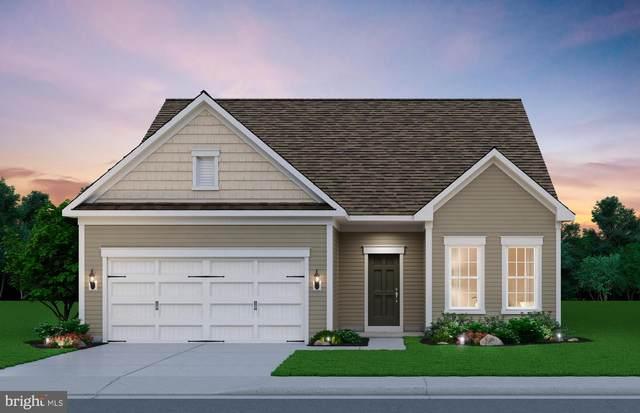 11 Mcquarie Drive #05, FREDERICKSBURG, VA 22406 (#VAST223116) :: Coleman & Associates
