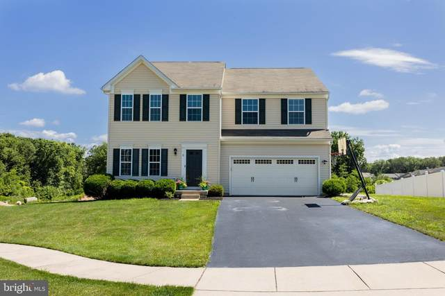 3 Hibiscus Court, ELKTON, MD 21921 (#MDCC169858) :: The Vashist Group