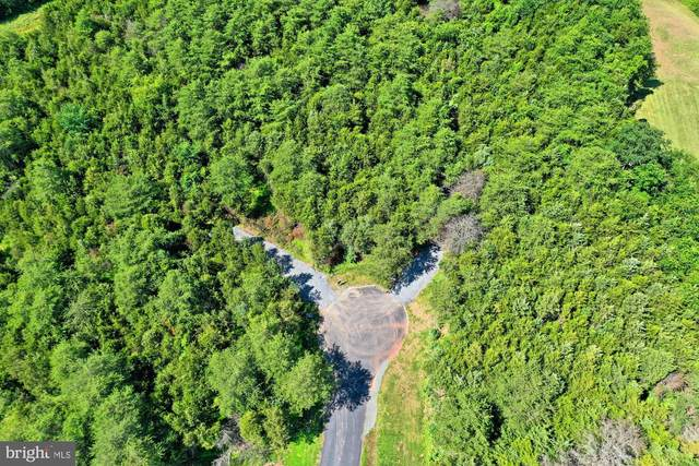 6521 Tack House Trail, CENTREVILLE, VA 20120 (#VAFX1136226) :: Debbie Dogrul Associates - Long and Foster Real Estate
