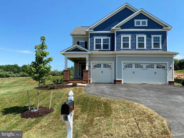 35912 Platinum Drive, ROUND HILL, VA 20141 (#VALO414046) :: Pearson Smith Realty