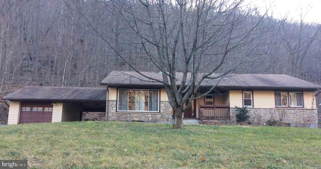 22122 Mcmullen Highway SW, RAWLINGS, MD 21557 (#MDAL134528) :: The MD Home Team