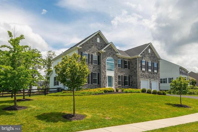 5 Ramsdell Court, ROUND HILL, VA 20141 (#VALO414086) :: Pearson Smith Realty