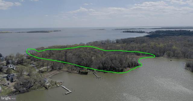 Barrison Point Road, ESSEX, MD 21221 (#MDBC497640) :: SURE Sales Group