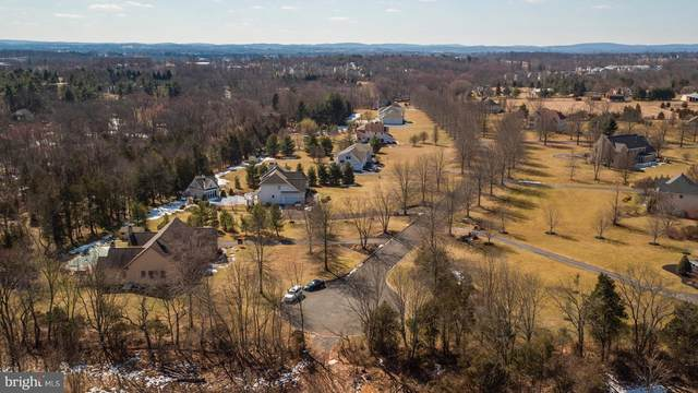 003 Henry Drive, ROYERSFORD, PA 19468 (#PAMC653246) :: ExecuHome Realty