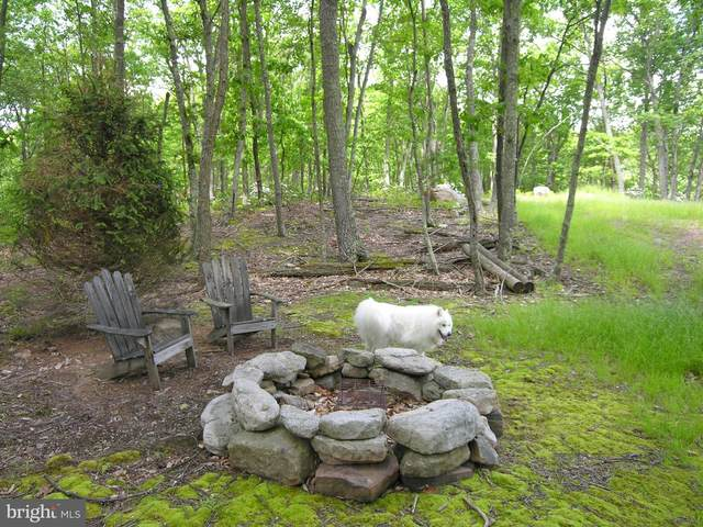 24-LOT Black Bear Drive, MAYSVILLE, WV 26833 (#WVGT103238) :: The Bob & Ronna Group