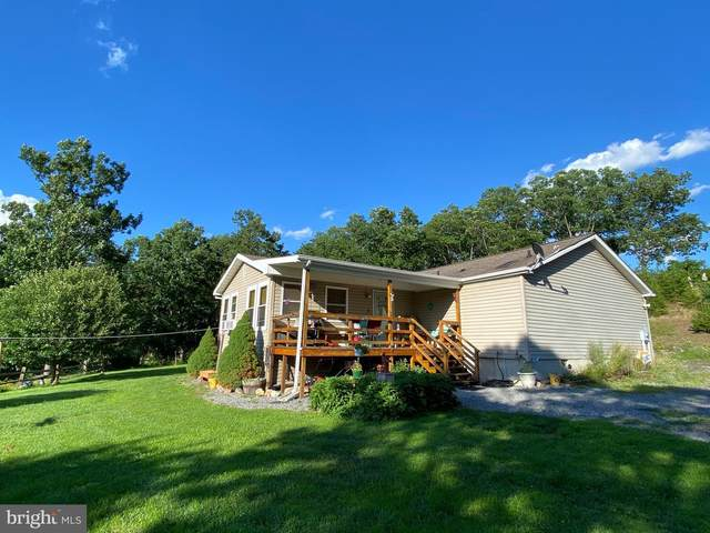 44 Crestview, MAYSVILLE, WV 26833 (#WVGT103240) :: The Bob & Ronna Group