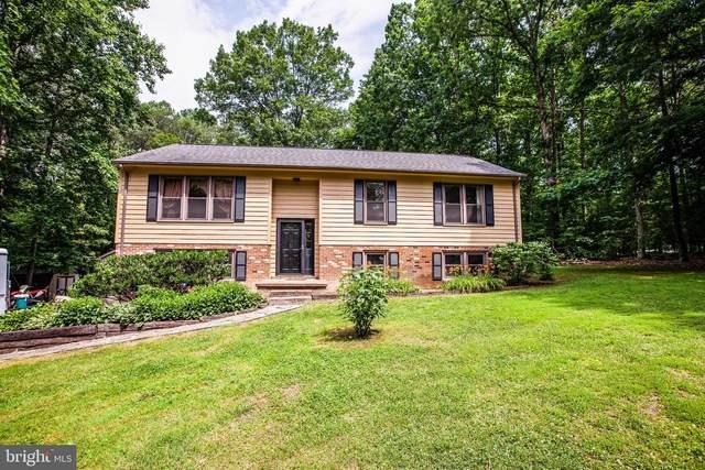 14293 Settle Drive, RIXEYVILLE, VA 22737 (#VACU141760) :: Eng Garcia Properties, LLC