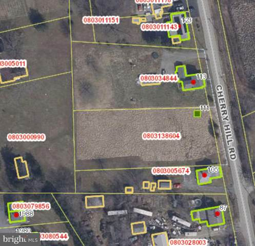 111 Cherry Hill Road, ELKTON, MD 21921 (#MDCC169900) :: Bob Lucido Team of Keller Williams Integrity