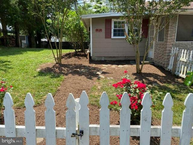 17 Hillcrest Road, RIVA, MD 21140 (#MDAA438014) :: Pearson Smith Realty