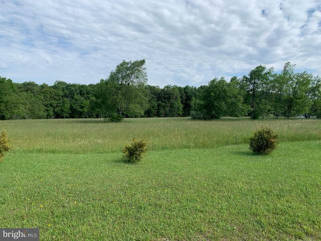 Lot 3 Edens Ridge Road, OAKLAND, MD 21550 (#MDGA132832) :: Corner House Realty
