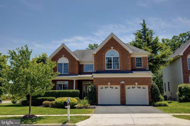 42355 Equality Street, CHANTILLY, VA 20152 (#VALO414306) :: Network Realty Group