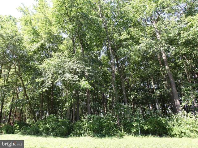 Lot 17 White Oaks Lane, POCOMOKE CITY, MD 21851 (#MDWO114644) :: AJ Team Realty