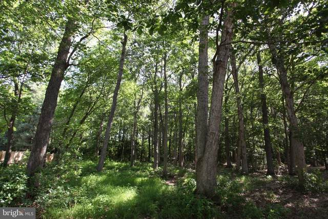 Lot 34 White Oak Lane, POCOMOKE CITY, MD 21851 (#MDWO114650) :: The Allison Stine Team