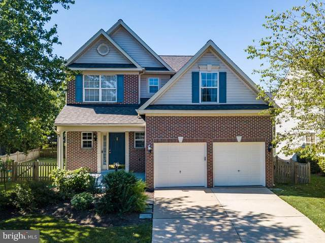 42967 Cedar Springs Court, BROADLANDS, VA 20148 (#VALO414344) :: The Vashist Group
