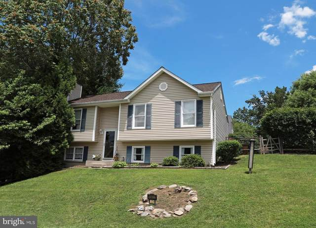10802 Lake Court W, NEW MARKET, MD 21774 (#MDFR266378) :: Colgan Real Estate