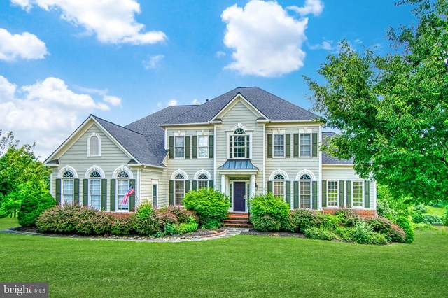 17238 Cannonade Drive, LEESBURG, VA 20176 (#VALO414352) :: The Denny Lee Team