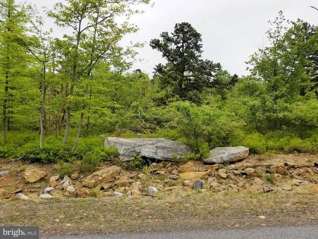 141 Buck Mountain, HAZLETON, PA 18201 (#PALU103386) :: LoCoMusings
