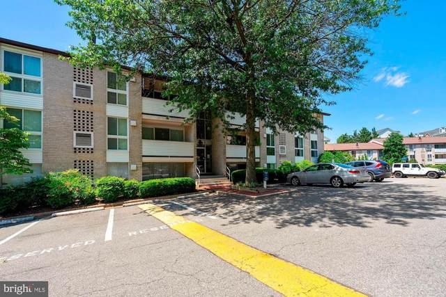 5610 Bloomfield Drive #202, ALEXANDRIA, VA 22312 (#VAFX1137142) :: The Bob & Ronna Group