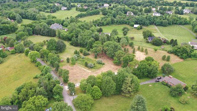 37540 Hughesville Road, PURCELLVILLE, VA 20132 (#VALO414452) :: Gail Nyman Group