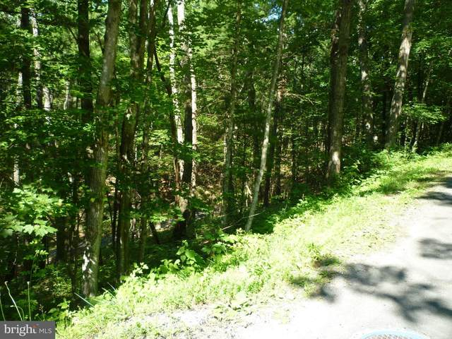 Lot 38 Anderson Rd., BASYE, VA 22810 (#VASH119552) :: Revol Real Estate