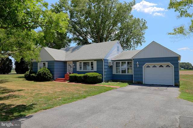 6546 Seashore Highway, BRIDGEVILLE, DE 19933 (#DESU163448) :: John Smith Real Estate Group