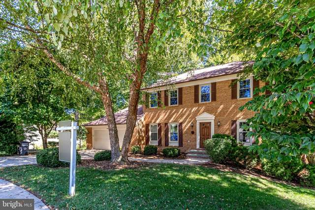 8000 Parklane Court, SPRINGFIELD, VA 22153 (#VAFX1137500) :: The Riffle Group of Keller Williams Select Realtors