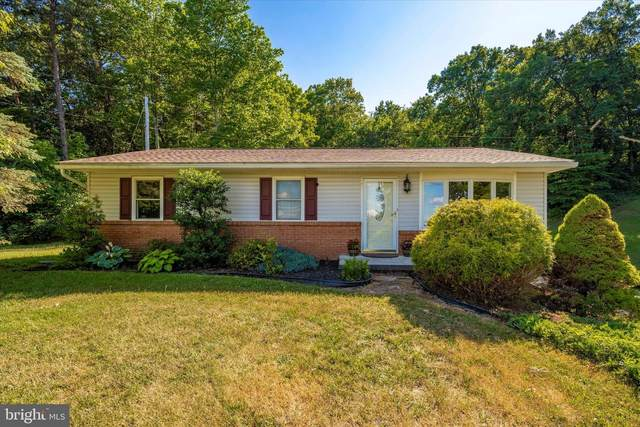 13218 Blairs Valley Road, CLEAR SPRING, MD 21722 (#MDWA173130) :: The MD Home Team