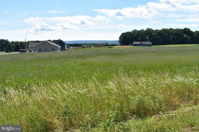Lot 10 Fox Road, SCHUYLKILL HAVEN, PA 17972 (#PASK131222) :: Ramus Realty Group