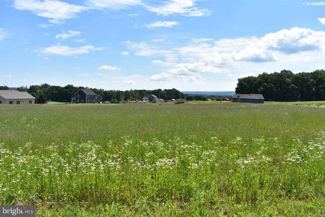Lot 11 Fox Road, SCHUYLKILL HAVEN, PA 17972 (#PASK131224) :: The Craig Hartranft Team, Berkshire Hathaway Homesale Realty