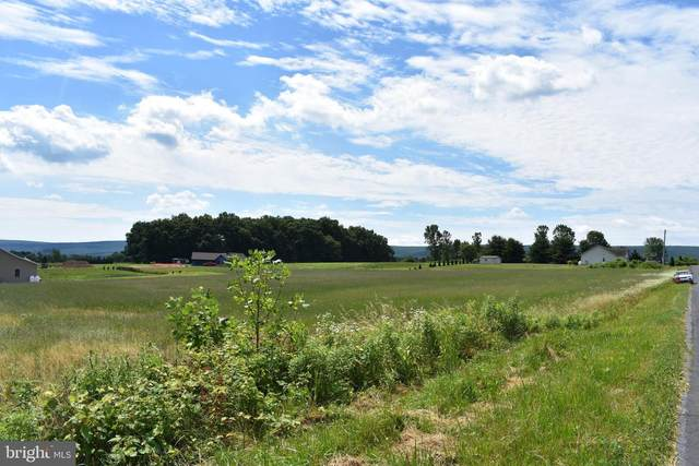 Lot 9 Fox Road, SCHUYLKILL HAVEN, PA 17972 (#PASK131226) :: Ramus Realty Group