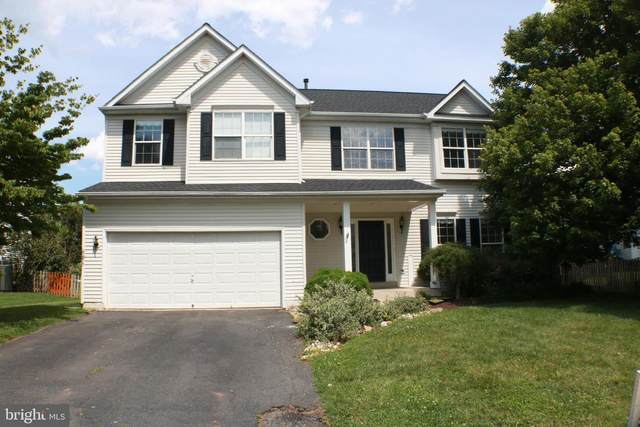 808 Valley Springs Drive, PURCELLVILLE, VA 20132 (#VALO414612) :: LoCoMusings