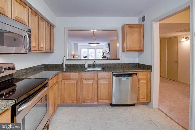 10248 Appalachian Circle 1-B1, OAKTON, VA 22124 (#VAFX1137706) :: Advon Group