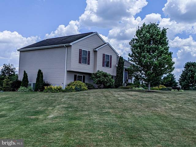 155 Double Play Drive, GETTYSBURG, PA 17325 (#PAAD112068) :: Iron Valley Real Estate