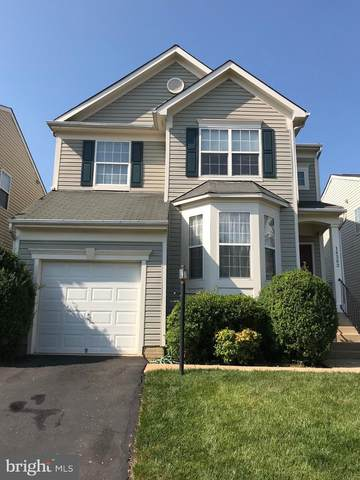 14383 Newbern Loop, GAINESVILLE, VA 20155 (#VAPW498332) :: Jim Bass Group of Real Estate Teams, LLC