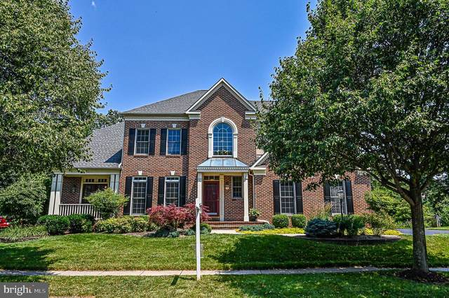26124 Talamore Drive, CHANTILLY, VA 20152 (#VALO414690) :: The Redux Group