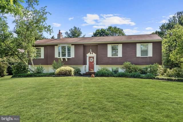 1131 Graber Road, RED HILL, PA 18076 (#PAMC654274) :: The Matt Lenza Real Estate Team