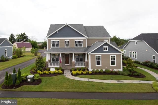789 White Elm, ALDIE, VA 20105 (#VALO414736) :: The Licata Group/Keller Williams Realty